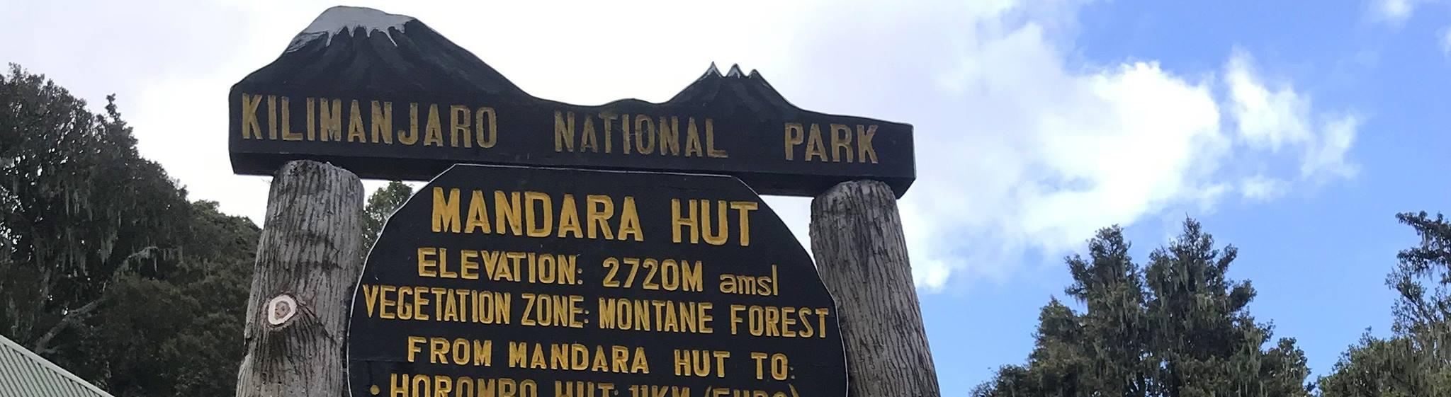 Kilimanjaro day trip climb