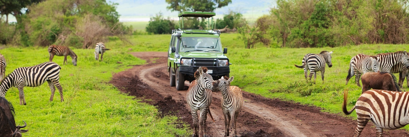 itripcoltd-Tanzania-Tours-Ngorongoro-Crater-safari