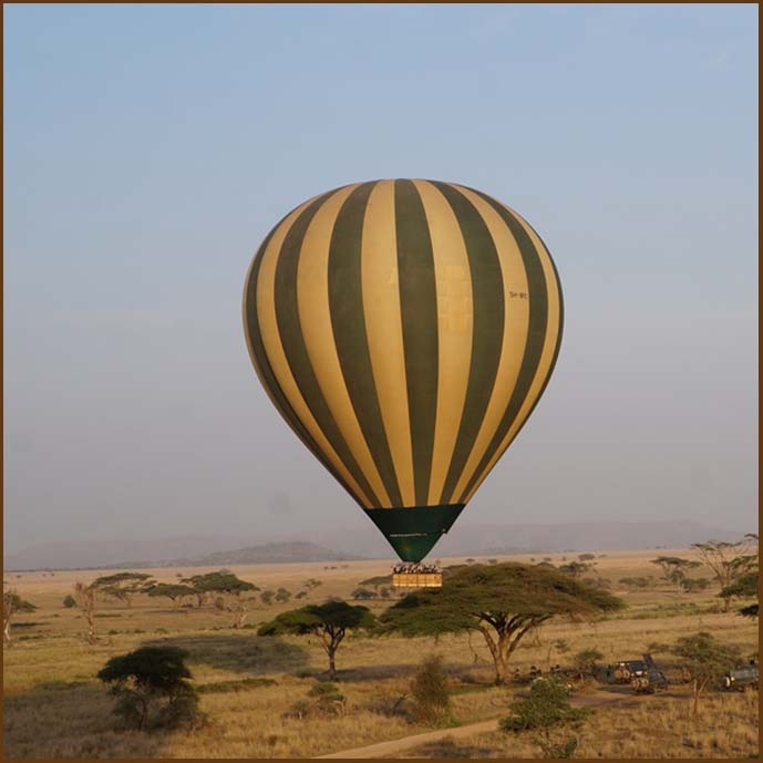 wildebeest migration balloon safari