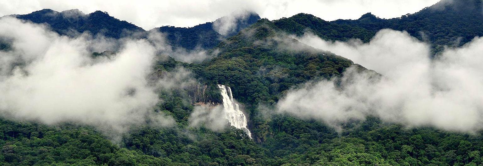 udzungwa-mountains-park